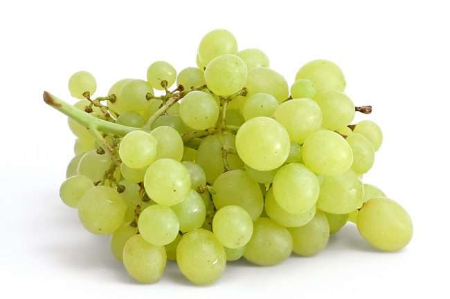 Table_grapes_on_white