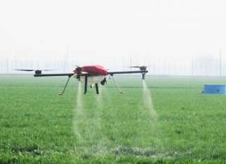 drones to spray insecticide on crop