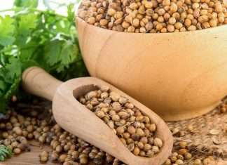 home remedies for coriander