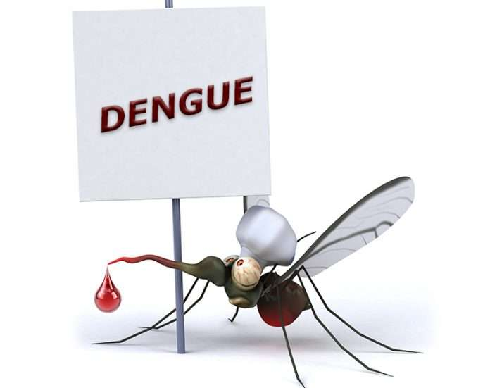 dengue in Mumbai