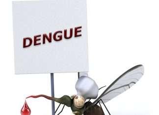 dengue in Mumbai