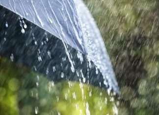 mumbaikar will have rainy weekend