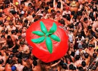 Tomatina fest 2018