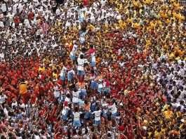 Pro Govinda Festival