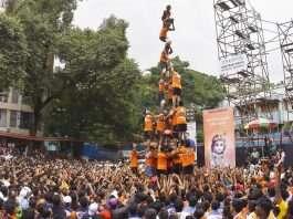 govinda festival