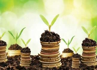 green_investment