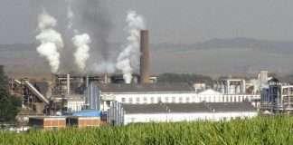 sugarcane frp increased to rs 290 per quintl says piyush goyal