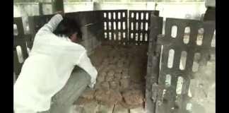 Ulhasnagar corporater Meena Sonde gives option of eco moshtikashti for wood of human combution