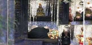 PM Modi Kedarnath Temple Celebrates Diwali
