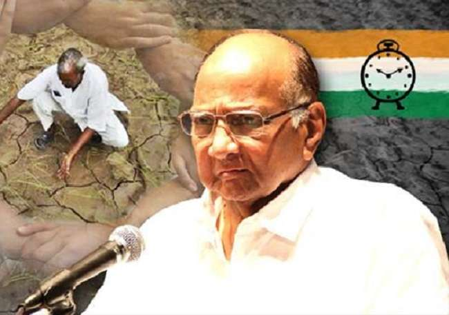 sharad pawar birthday ncp workers help drought affected people