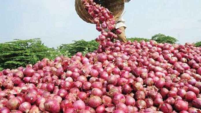 onion rates increase again in mumbai,thane,pune due to unseasonal rains