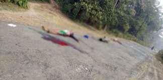 Naxals killed three people in Gadchiroli