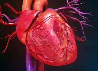 The disease of blood vessels is increasing and 5 patients need angioplasty every day