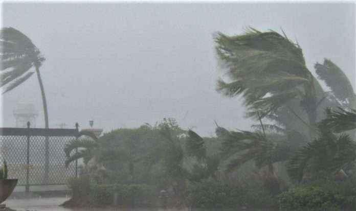 stormy rainfall may happen in vidarbh