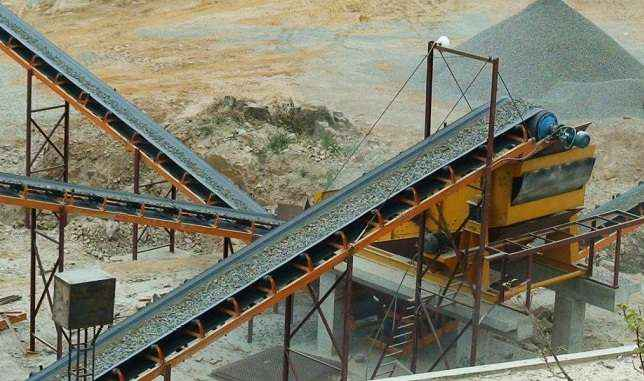 worker dead after fell in to crusher machine