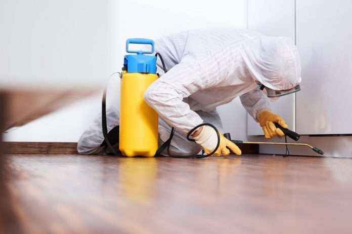 pest control cause death of two workers at pune