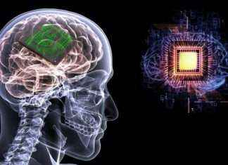 scientist making 'Smart chip' to give humans brain super intelligence