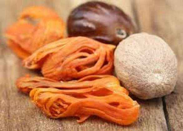 benefits of myristica fragrans