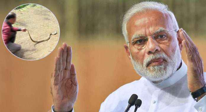snake friend appointed for modi rally