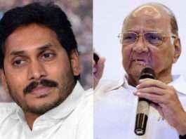 Jagan Mohan Reddy and Sharad Pawar