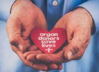 Organ donation gives life to 3 peoples