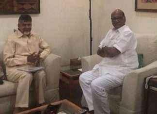 chandrababu naidu and sharad pawar