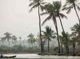 monsoon in andaman