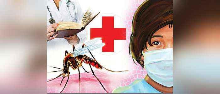 Dengue cases increasing in maharashtra, death rate decreased