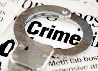 Crime 1200 Photo