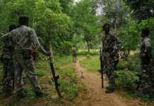 five naxals killed in encounter in chattisgarh