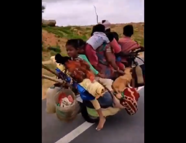 6 people and 2 dog -riding on a single bike viral video on social media