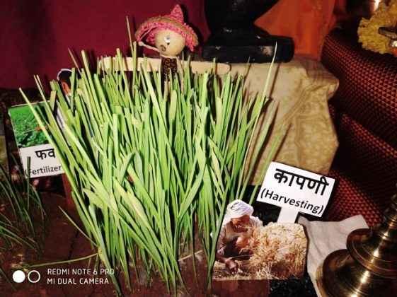 Avinash Kavishwar celebrate eco friendly bappa