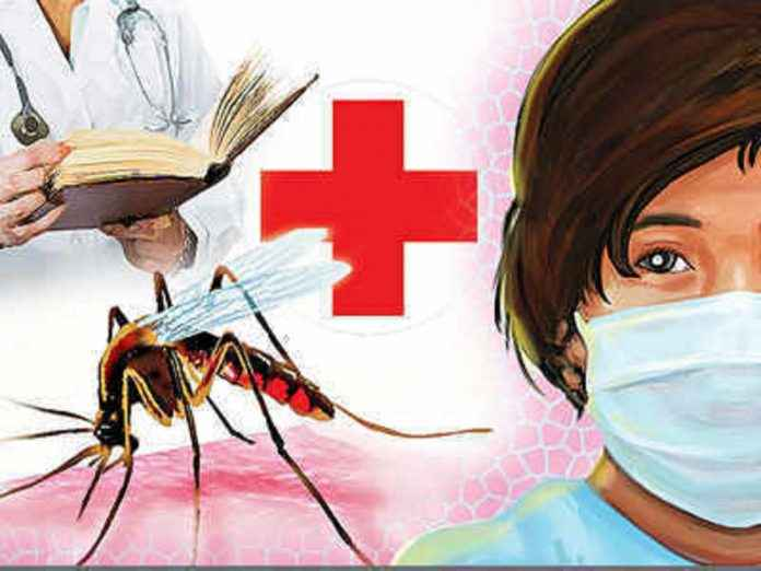 swine flu lepto dengue deaths rising in mumbai