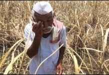one lakh farmers not get help through PM-kisan scheme in Nashik
