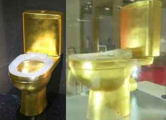 toilet made of solid gold 40 thousand diamonds on seat get viral on social media