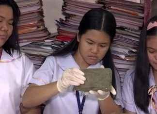 bricks made by dog poo
