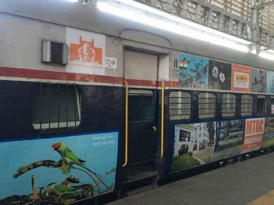 nagzira wild life sanctuary photographs publish on mumbai pune deccan express