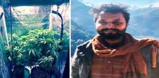 26 year old boy growing ganja at his friends house using advanced technology