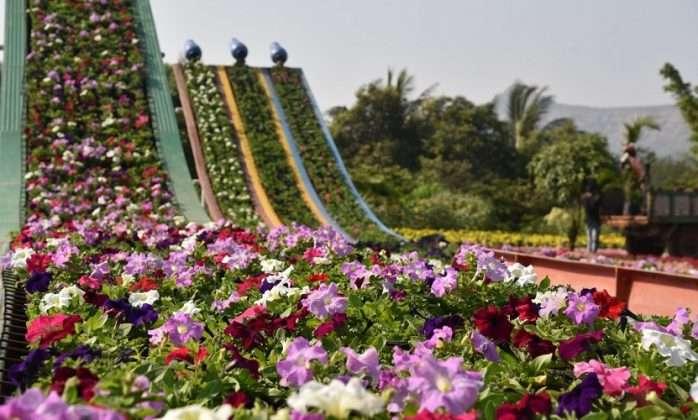 nashik Flower Park 2