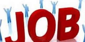 Recruitment in iit for 700 open positions