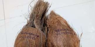 Expiry date will be printed on coconut