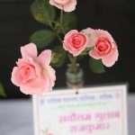 NMC Flower exibition 06
