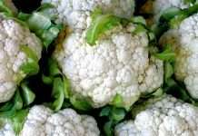 benefits of cauliflower vegetable