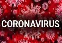 coronavirus in mumbai