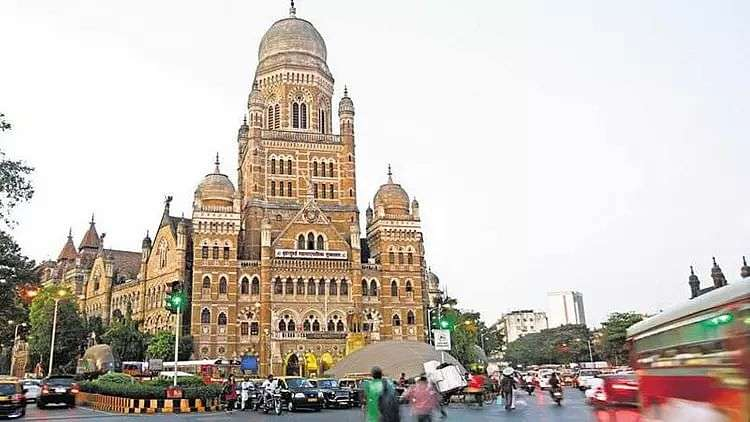 bmc statutory and special committee elections postponed