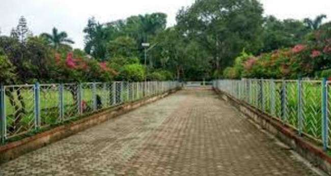 २०२ Parks Closed In Pune And Reduce crowd in Dadar Flower Market