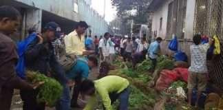 corona patients Increase in Dadar, Dharavi, Mahim division
