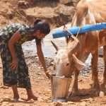 Palghar water crisis 8