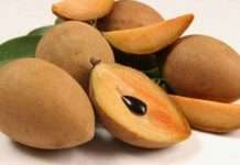 health benefits of chikoo