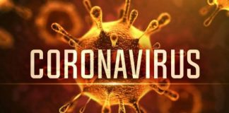 corona positive patient run away from covid quarantine center in dhule